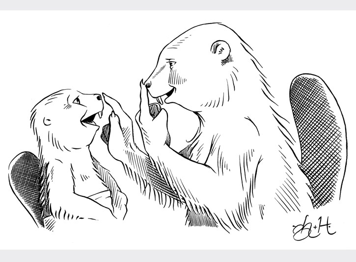 Pen and ink illustration for the How To Read Your Baby educational series. I've always loved the expression on the baby beaver's face. India ink on 9 x 12 bristol plate. Pencils by Gabe Hernandez.